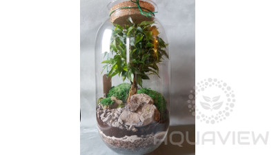 Forest in the jar - 42x27cm