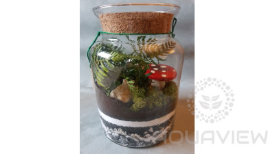 Forest in the jar 25x19cm